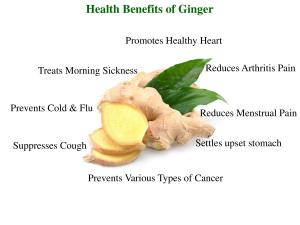 What Can Ginger Do For Me?